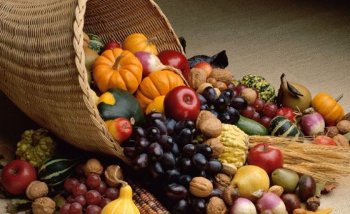 fruits-harvest-festival[1]